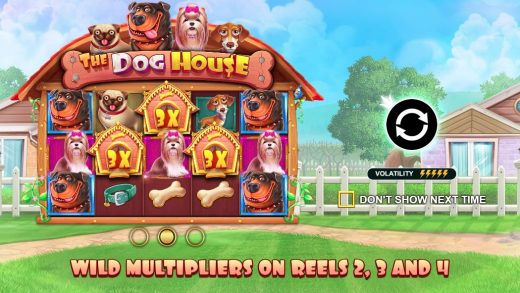 Обзор The Dog House