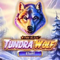 Обзор Fire Blaze Golden: Tundra Wolf