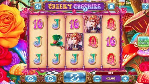 Обзор Cheeky Cheshire