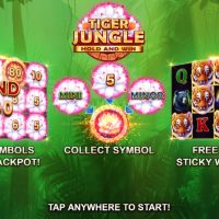 Обзор Tiger Jungle Hold and Win