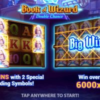 Обзор Book of Wizard Double Chance