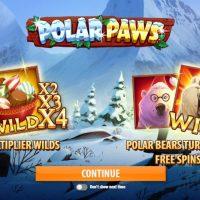 Обзор Polar Paws